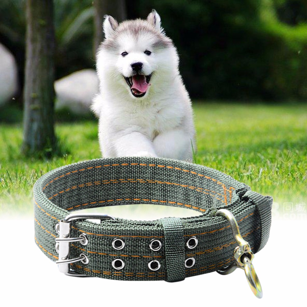 L/XL Size Army Green Canvas Pet Dog Collar for Large Dogs Collars Double Row Buckle Design Strong and Pet Products