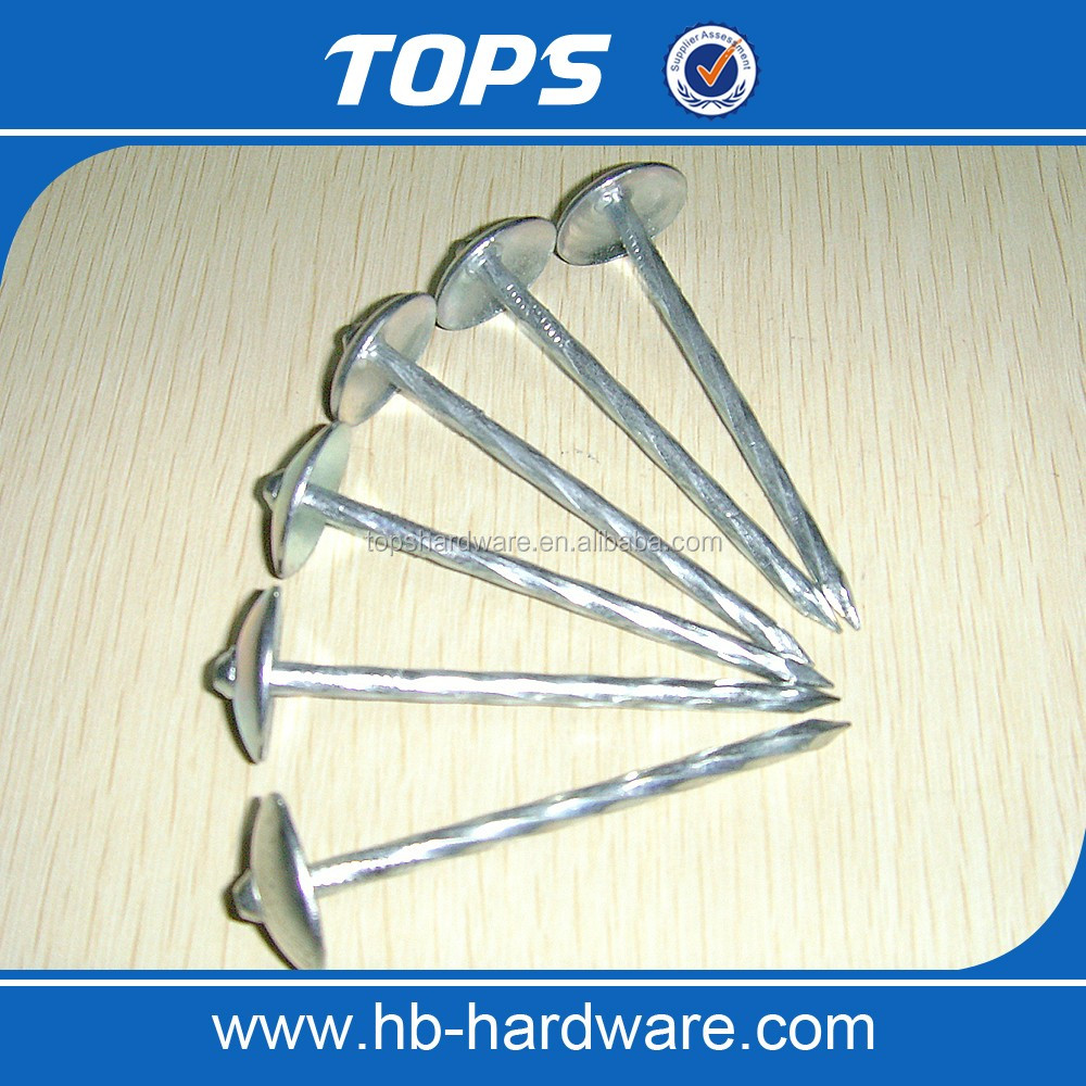 UMBRELLA HEAD ROOFING NAILS 9G X2 1/2""