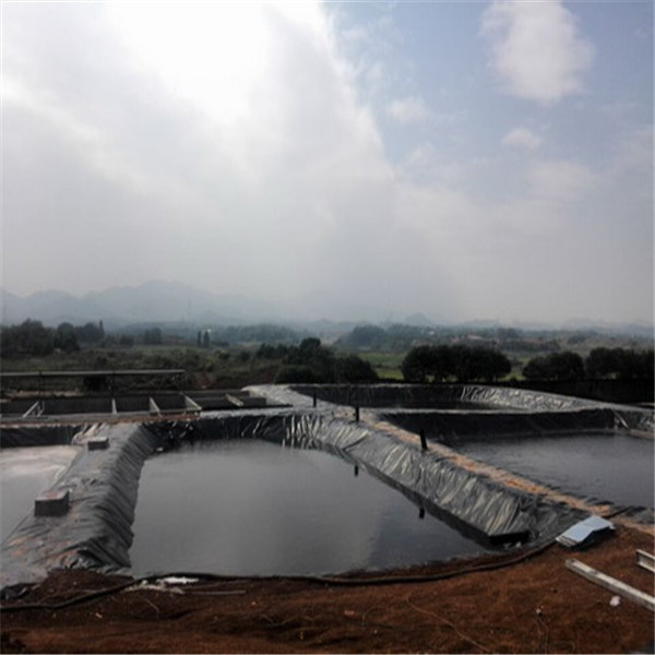 Easy Construction Low Weight HDPE Geomembrane