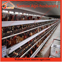 Modern prefab broiler chicken poultry house