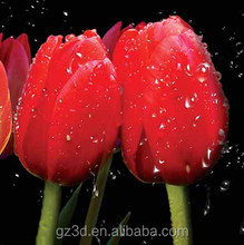 High definition 3d lenticular picture, beautiful flower images for decoration