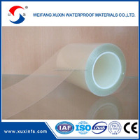Clear Plastic Silicone Coated PET protective film