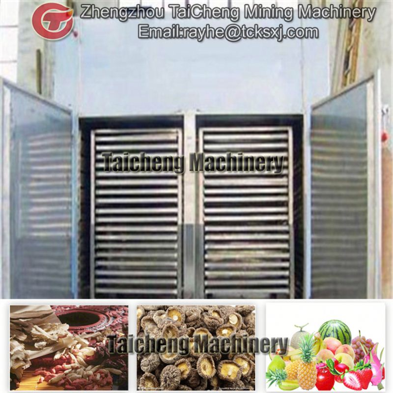 1900kg/h fruit dryer machine in Nigeria