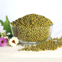 Agricultural crop green mung bean buyers with lower price