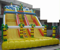Hola inflatable water park slides/giant inflatable slide