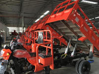 Ghana Motor King Hydraulic Dumping Adult Tricyle For Cargo Use