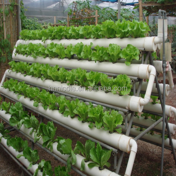 complete hydroponic system clean and pollution free organic vegetable fertilizer