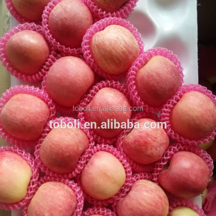 china famous fruit in china yantai fuji apples for sale