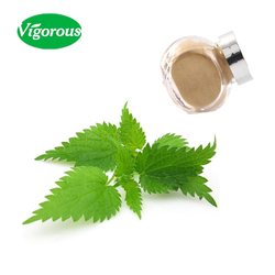 1%Organic silica high quality natural nettle root extract powder