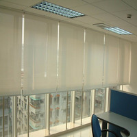 Somfy motorized roller blinds made in china