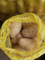 2015 Crop fresh Holland potato for sale