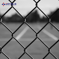Galvanized Residential Metal Fencing Chain Link Fence