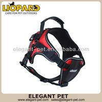 Newest stylish outdoor dog lead and harness set