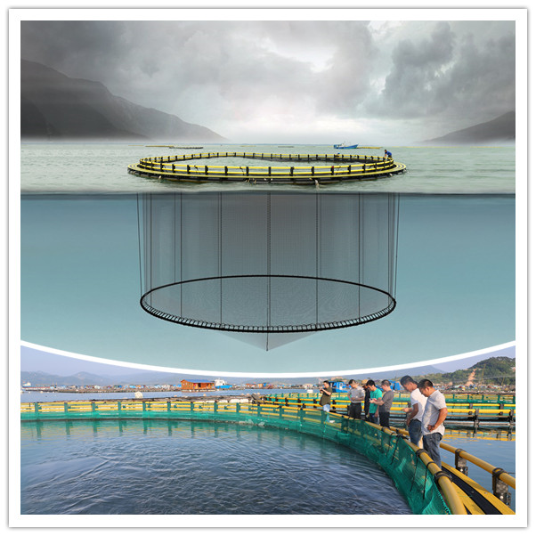 HDPE tilapia fish farming cage or fish cage net for fish cage floating price