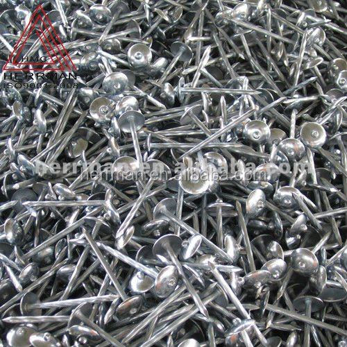 steel galvanized roofing nails
