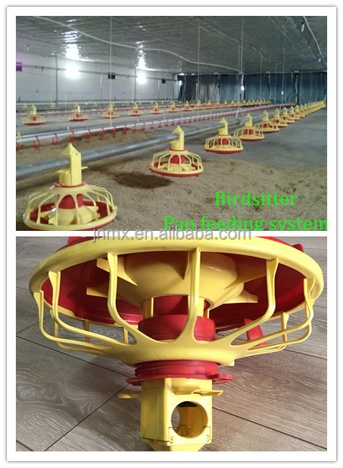 Poultry equipment steel structue chicken farm design for small business