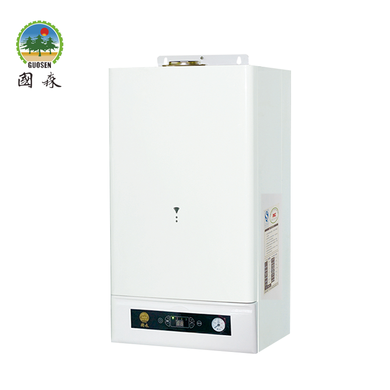 Airtight Structure Wall Mounted Natural Gas Heater For Different Heating Requirements