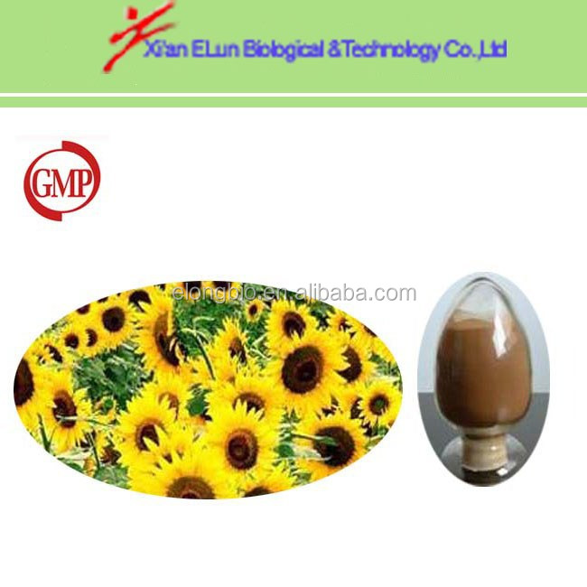 100% pure nature sunflower seed lecithin extract powder