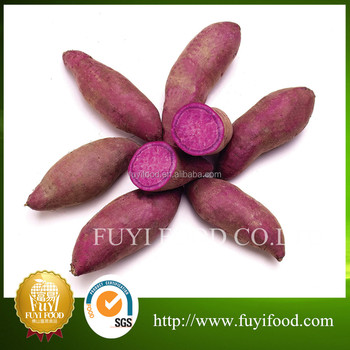 New Harvest Sweet Fresh Purple Sweet Potato Fresh