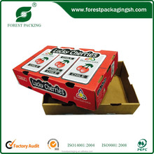 FOREST PACKING FRUIT SHIPPING BOXES