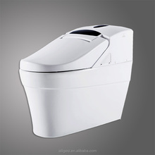 Automatic Cleansing Lavatory Electric One Piece Intelligent Toilet ZJS-02