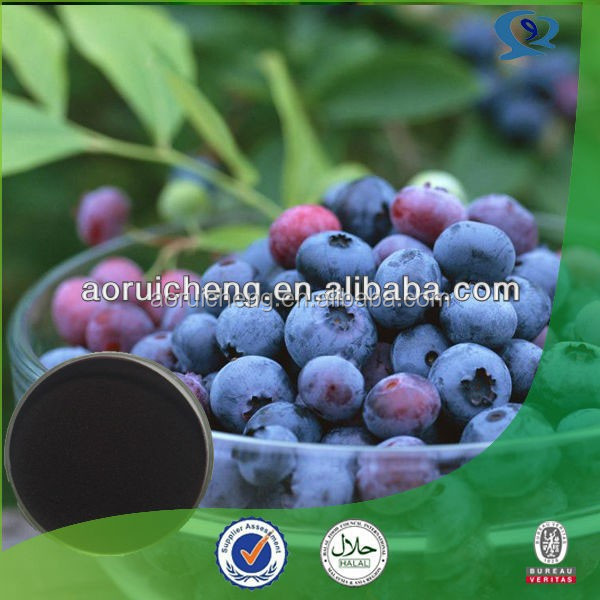 Pure Natural organic europe bilberry, blueberry extract, organic bilberry lutein