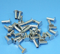 China high quality custom metal rivet
