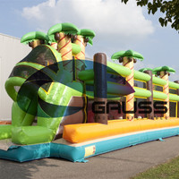 2017 New Design Giant Outdoor Inflatable