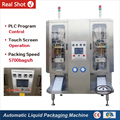 HP2-1000 High-Speed Mineral Water Pouch Packing Machine Price