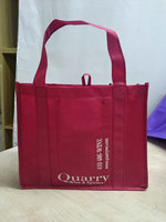 Professional non woven wine bag with CE certificate