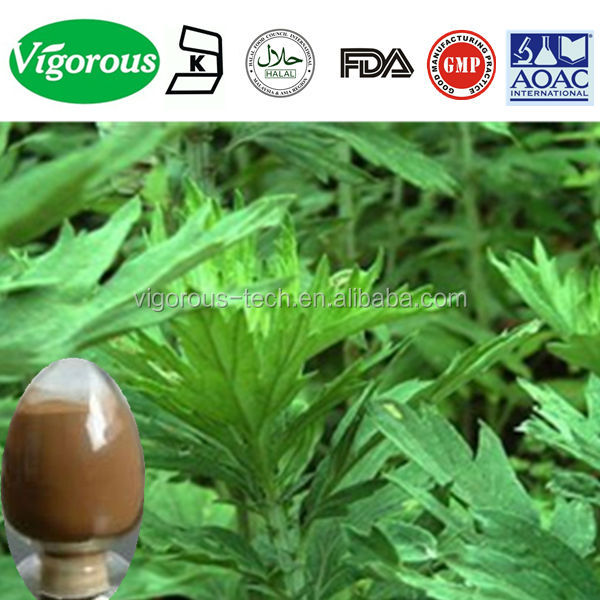 high qualityAiye Leaf Extract Powder/Aiye Leaf P.E.