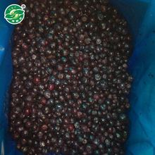 Professional Manufacturer All Normal Sizes frozen iqf bulk fresh fruit blueberry fruit