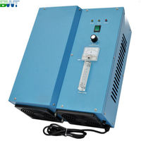 16 g/h CE certification and Electrical Power Source Ozone Generator portable ozonizer