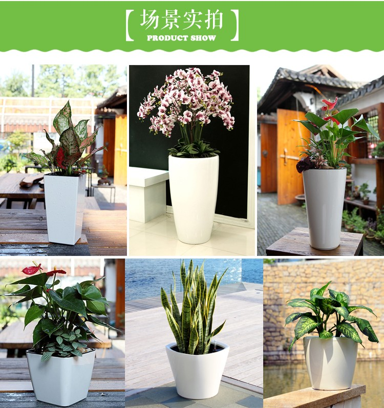 Top quality colorful plastic flower pot with water indicator
