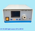 LED medical endoscope light source with display screen