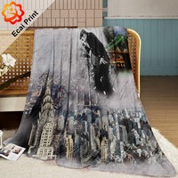 wholesale newest modern sublimation customize korean blanket