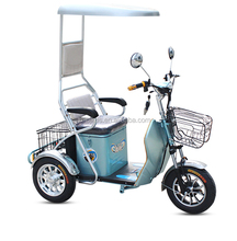 Hot Nepal Thailand Chile cheap passenger trike electric 3 wheel adult tricycle