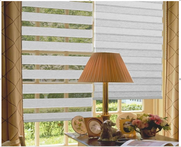 Light Filtering Sheer Shades, Double Layer Zebra Blinds
