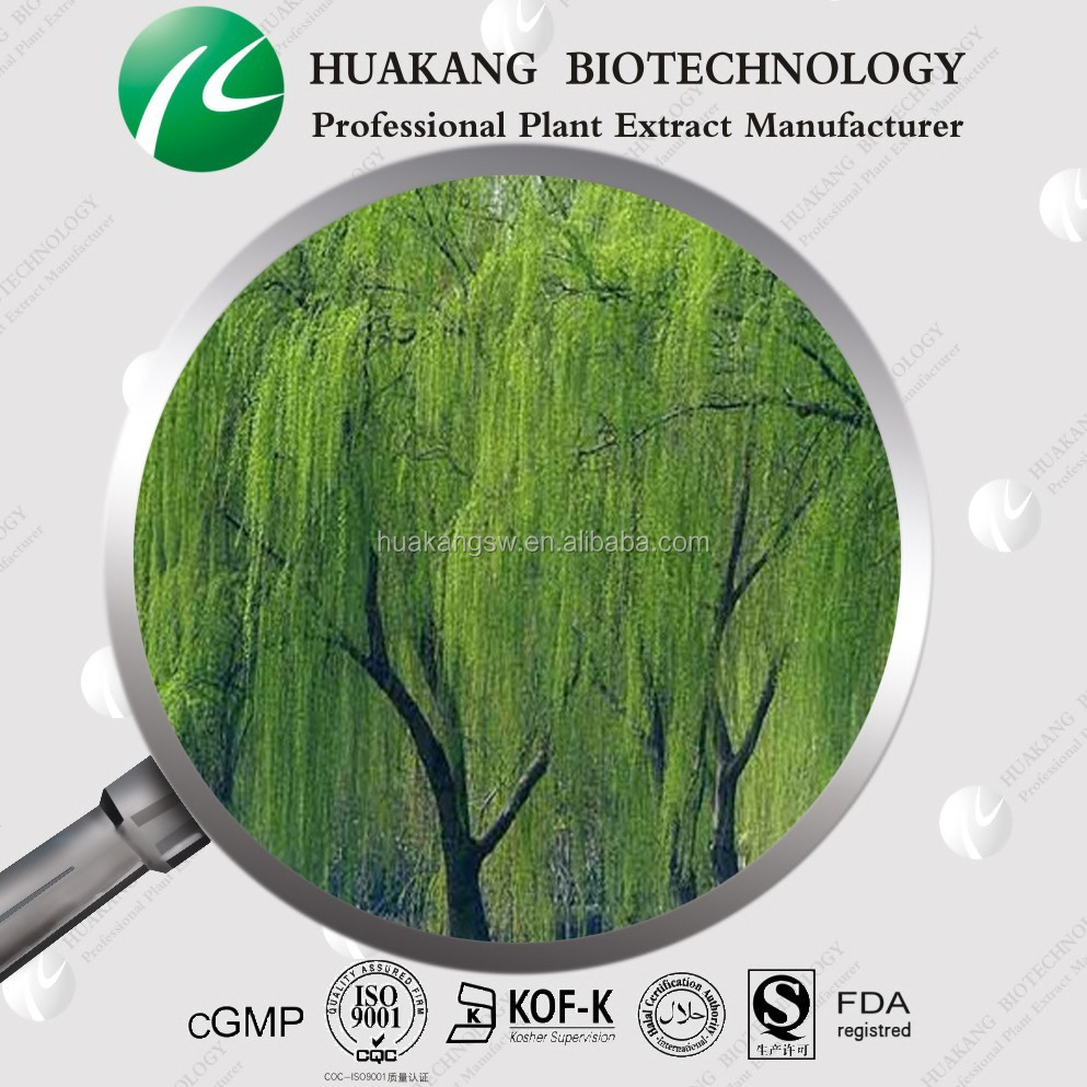 Manufacturer supply High Quality White willow bark extract /Salix babylonica L.