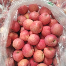 Whole Sale Fresh Fruit Red Delicious Fuji Apple Exporter In China