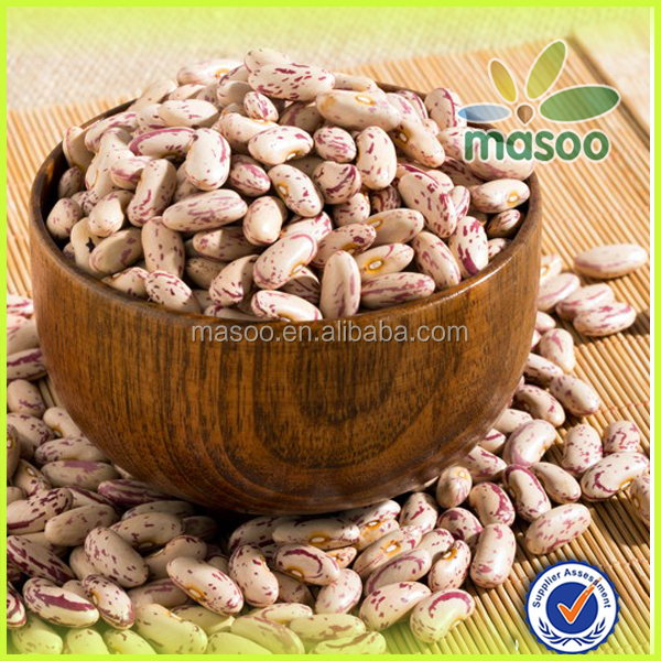 red and white speckled kidney beans,also called sugar beans,lskb,pinto beans