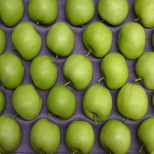 Name of green apple fruits
