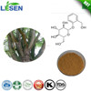 White Willow Bark Extract (Salix Alba Bark)