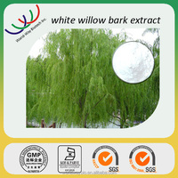 Herbal extract natural aspirin 15%-98% salicin white willow bark extract