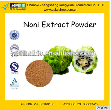 GMP factory Supply Natural Noni Fruit Powder 1%-90% Polysaccharide by UV