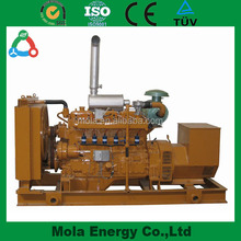 Biogas or Natural Gas or Diesel fueled Electrical Generator Steam Turbine