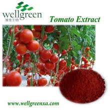 factory provide high quanlity tomato lycopene powder