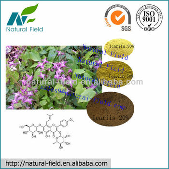 horny goat weed seed extract professional manufacturer