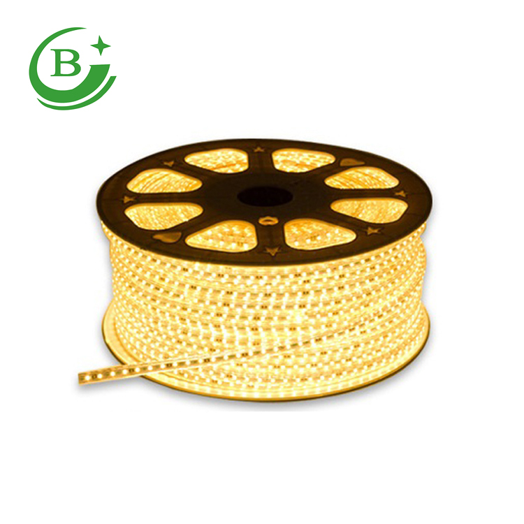 High quality <strong>R</strong>/Y/B/G/W/WW 220v 3014 waterproof strip led light