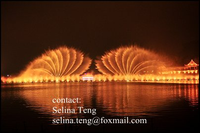 flower shapes outdoor dancing water fountain